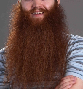 Beards like this are a common sight in the modern office. In fact this is pretty tame compared to some